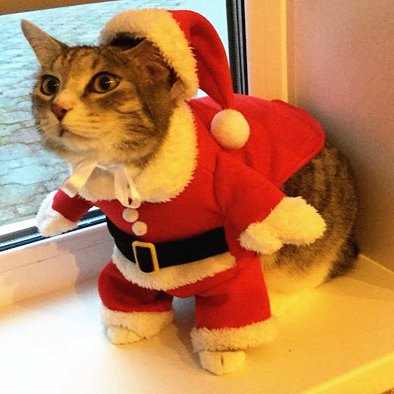 Christmas Cat Clothes ... - Christmas Cat Clothes Costume Clothes For Cats New Year Puppy Outfit